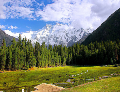 Hunza Valley (by Air)