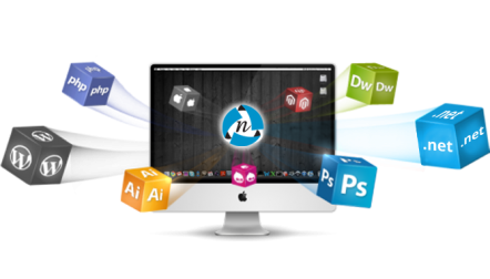 Web Design Company in Lahore, Pakistan