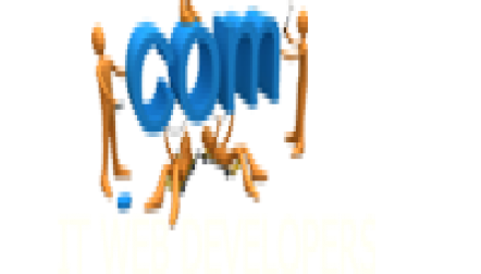 IT WEB DEVELOPERS