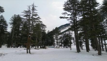 Khana Badosh Travels and Tours