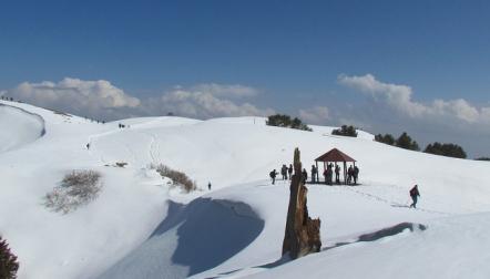 One Day Hike Tour to Nathia Gali, Mushkpuri Top  Dinner at Monal